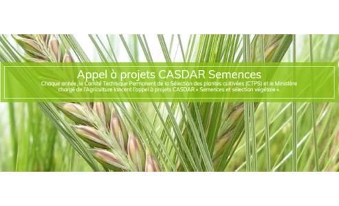 L'Appel à projets CASDAR Semences 2019 est sorti