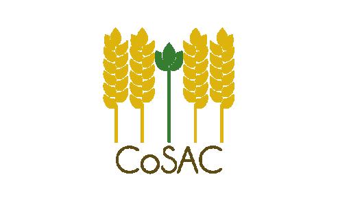 Le projet ANR CoSAC a organisé son séminaire à mi-parcours