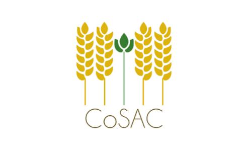 31-01 & 01-02-2019 Séminaire final du projet ANR CoSAC