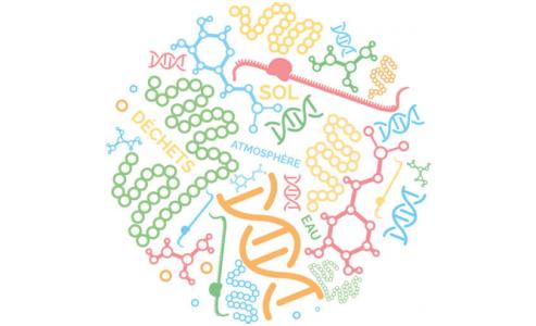 7-10-2017 La microbiologie moléculaire au service du diagnostic environnemental à Angers