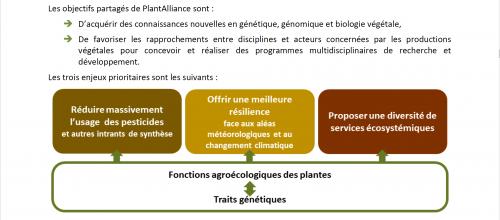AMI du consortium PlantAlliance