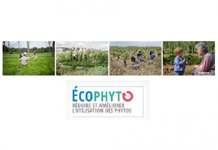 Colloque Ecophyto Recherche et Innovation 2021
