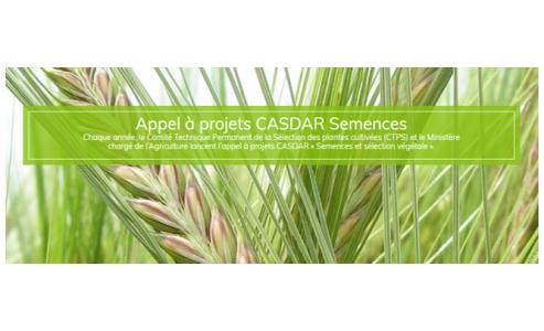 L'appel à projets CASDAR semences 2020 vient d'être lancé