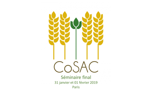 SAVE THE DATE: CoSAC - colloque final 31 janvier et  01 février 2019 à Paris